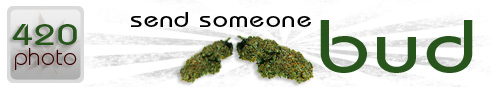 Send Some One Bud - 420photo.com